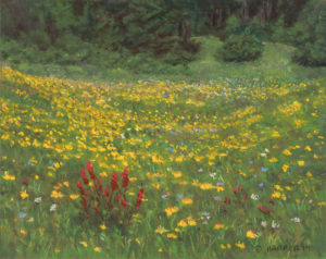 Meadow of Gold, 8x10, pastel on paper, © Nelia Harper