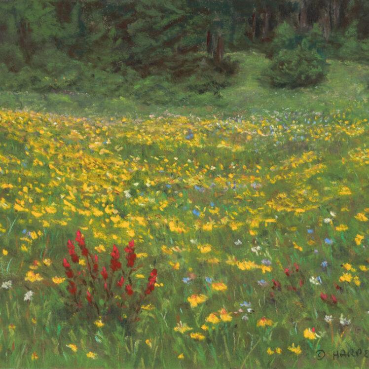 Meadow of Gold, 8x10, pastel on paper, © Nelia Harper