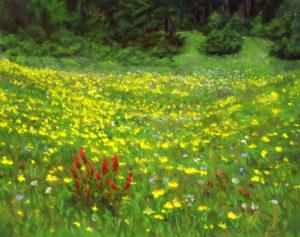 Meadow of Gold © Nelia Harper