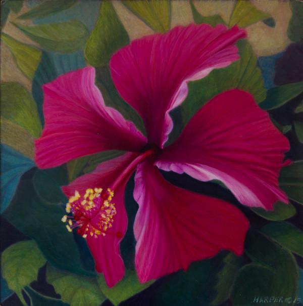 The Hibiscus ~ Egg Tempera 6x6 © Nelia Harper