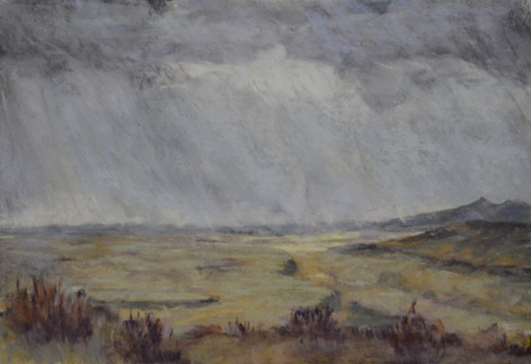 """""""Bison Overlook"""" at Soapstone Prairie Open Space 6x8 Pastel © Nelia Harper"""