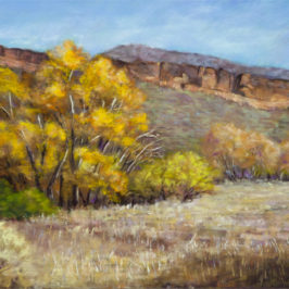 Bobcat Autumn – 12th Annual Mile High International Pastel Exhibition