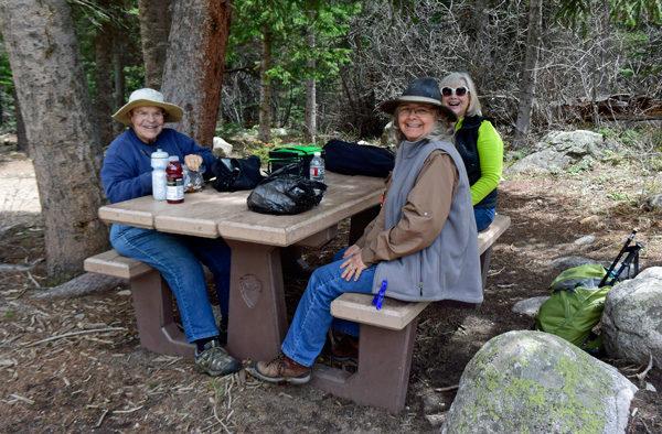 A spontaneous picnic lunch