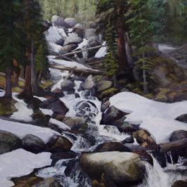 Cascade Falls – Rocky Mountain National Park