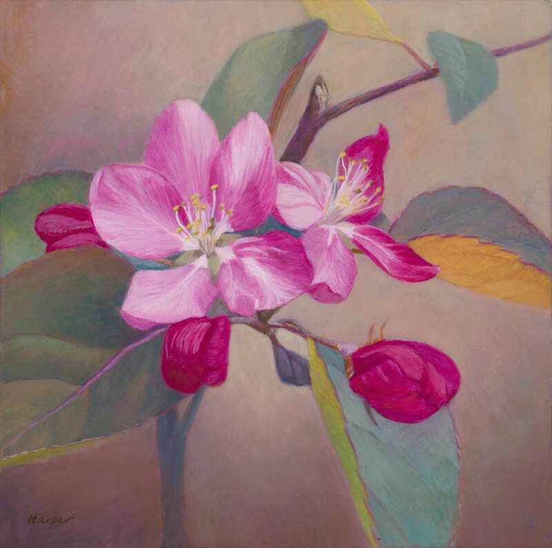 Spring Blossoms, egg tempera, 6x6 © Nelia Harper