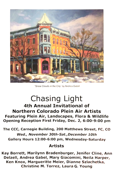 chasing-light-2016-poster-web-size