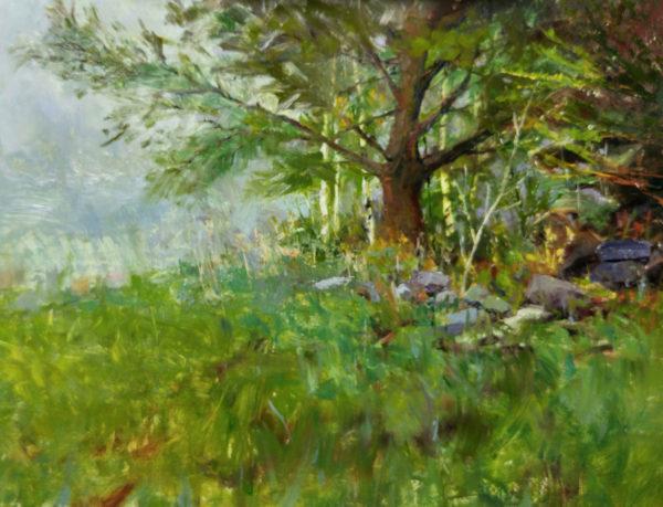 Day 2 - White Pine foreground