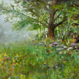 White Pine after Richard Schmid