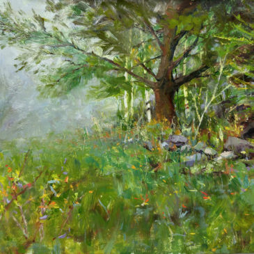 White Pine after Richard Schmid