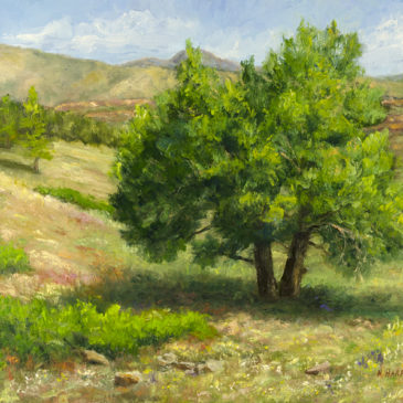 """Bobcat Oasis"", Oil on Canvas Panel, 12x16, © Nelia Harper"