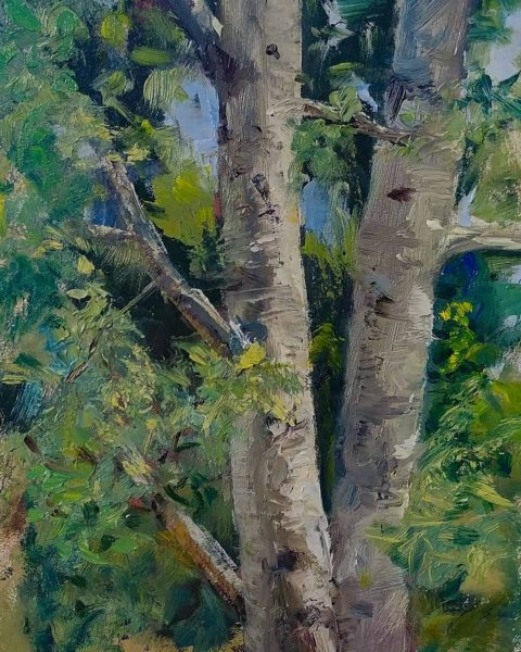 """Aspen Study #?"", 7x5, oil on board, © Nelia Harper"