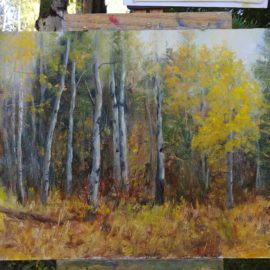 Days 23-29 Steamboat Plein Air Event and Strada Easel Challenge