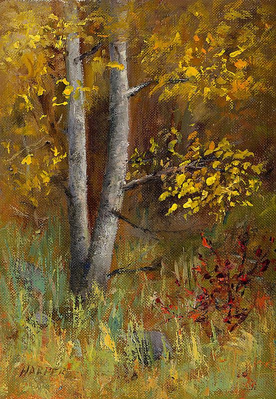 Aspen Study No. 6, oil, 5x7 © Nelia Harper