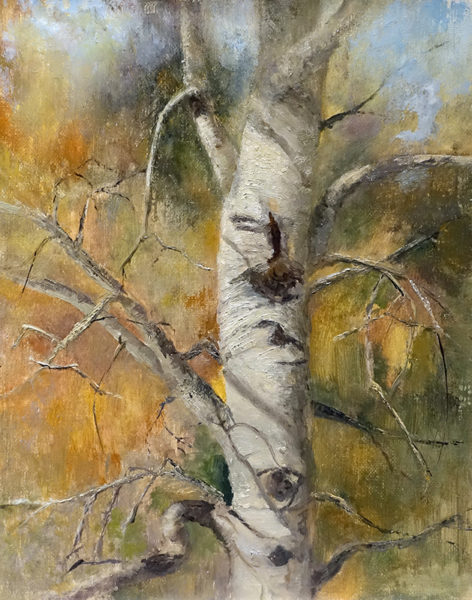 Aspen Etude, 10x8, oil on linen, © Nelia Harper