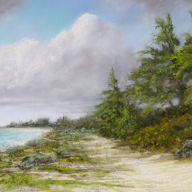 Walk With Me, pastel, 10x20 © Nelia Harper